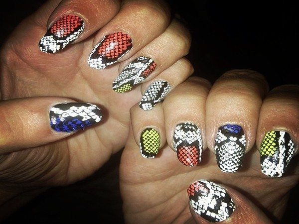 Multicolored Snakeskin Nails