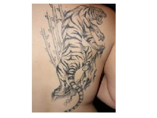 Grey Ink Tiger with Bamboo Tattoo