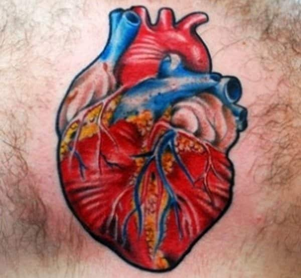 15 Awe-Inspiring Anatomical Heart Tattoo Designs