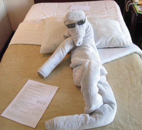 entertaining-human-towel