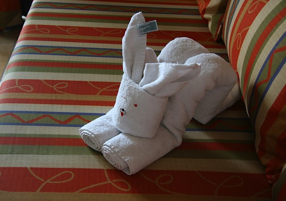 excited-towel