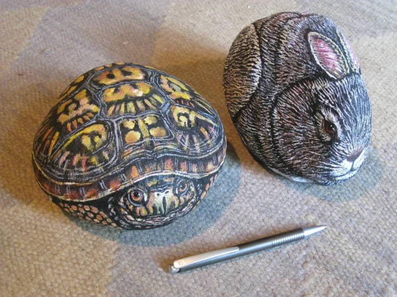 turtle-and-rabbit