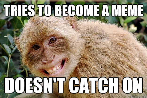 15 Funny And Adorable Monkey Memes