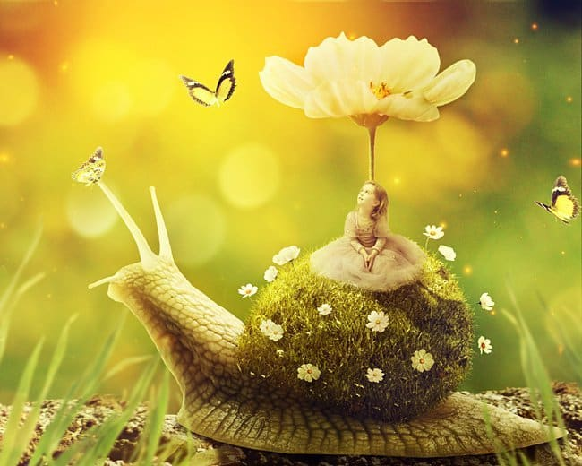 Create a Surreal Snail with a Grassy Shell in Photoshop Photoshop Compositing Tutorials on the Web