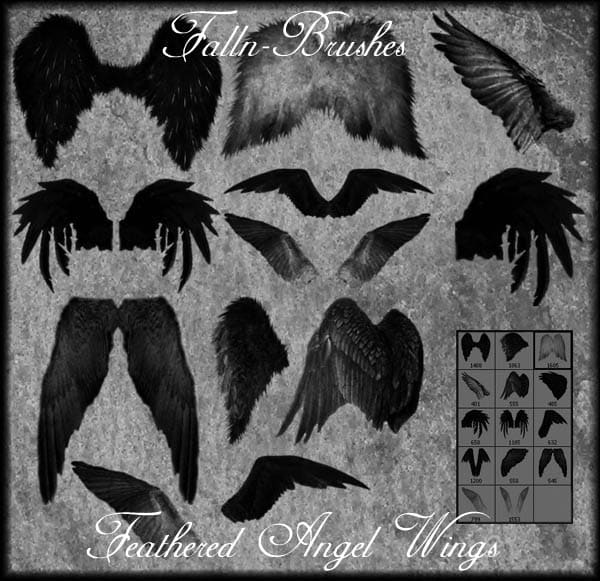 Feathered Angel Wings Brushes free photoshop brushes