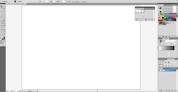 Adobe Illustrator CS5 Workspace